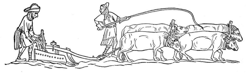 Ochsen mit Pflug