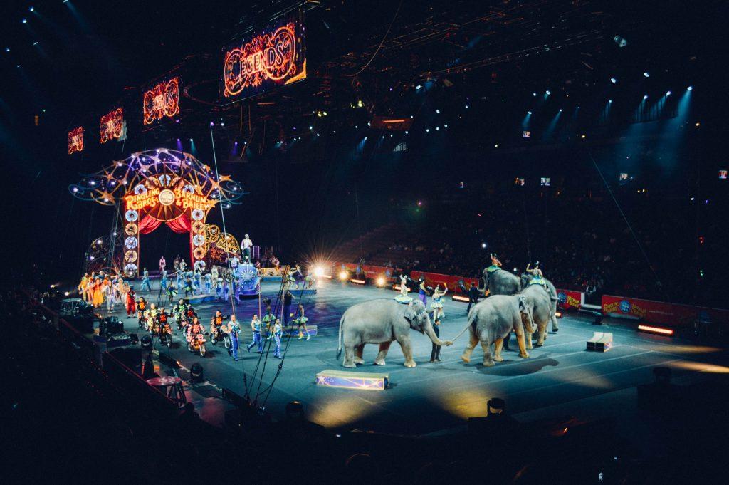 Zirkus mit Elefanten in der Manege