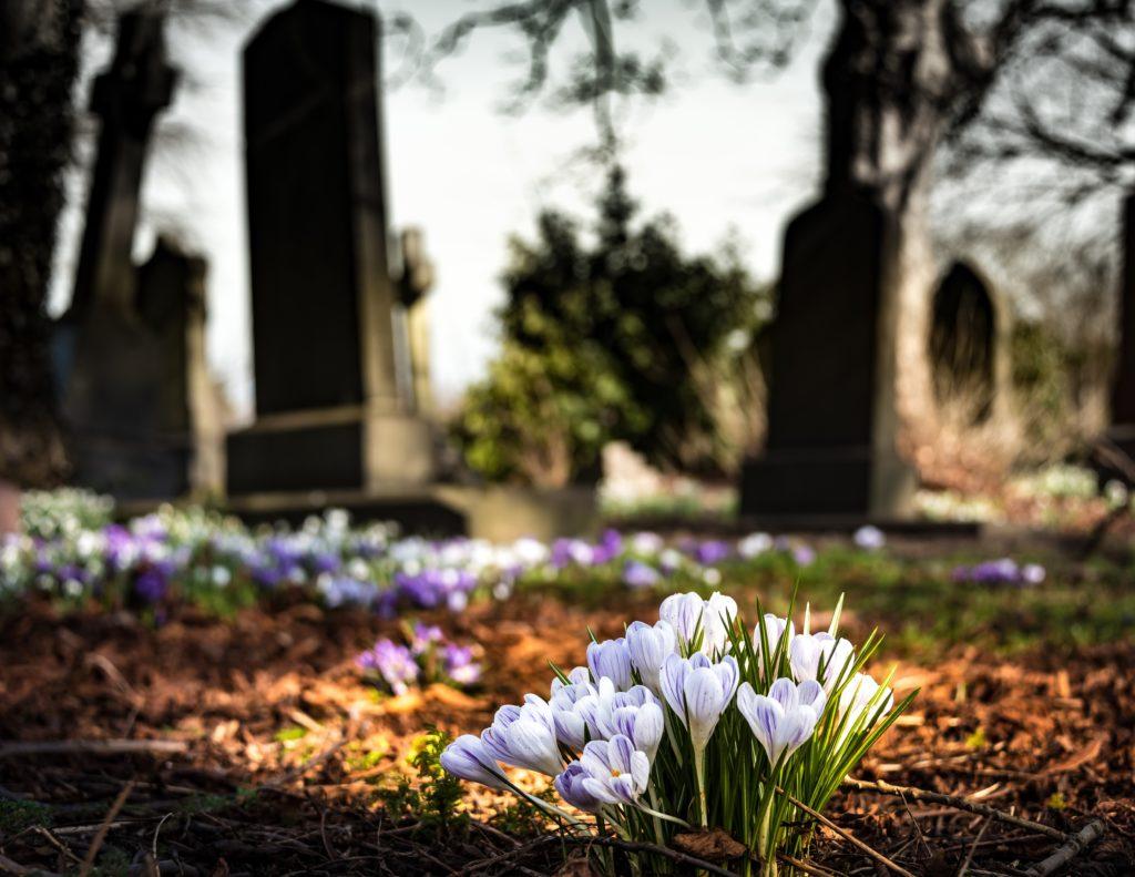 Blumen auf einem Friedhof